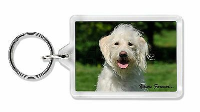White Labradoodle 'Yours Forever' Photo Keyring Animal Gift, AD-LD3yK