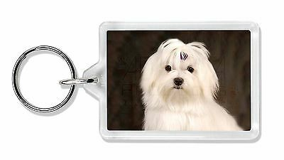 Maltese Dog Photo Keyring Animal Gift, AD-M1K