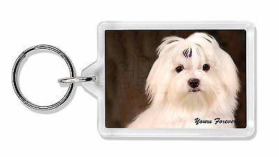 Maltese Dog 'Yours Forever' Photo Keyring Animal Gift, AD-M1yK