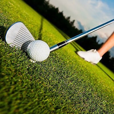 Lesson with a PGA Pro and a Round of Golf