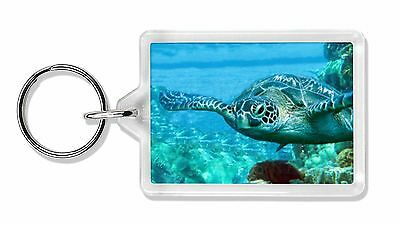 Turtle by Coral Photo Keyring Animal Gift, AF-T20K