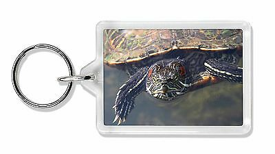 Terrapin Intrigued by Camera Photo Keyring Animal Gift, AR-T1K