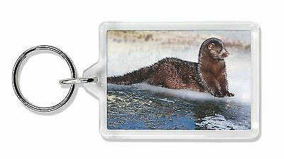 Mink on Ice Photo Keyring Animal Gift, AWE-1K