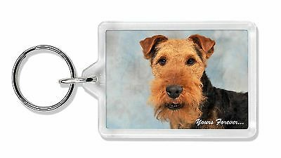 Welsh Terrier 'Yours Forever' Photo Keyring Animal Gift, AD-WT1yK