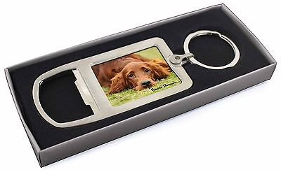 Red Setter Dog 'Yours Forever' Chrome Metal Bottle Opener Keyring in, AD-RS2yMBO