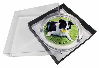 'Happy Easter' Border Collie Glass Paperweight in Gift Box Christm, AD-CO69DA1PW