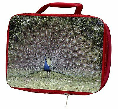 Colourful Peacock Insulated Red Lunch Box, AB-PE76LBR