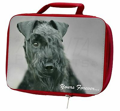 Kerry Blue Terrier 'Yours Forever' Insulated Red Lunch Box, AD-KB1yLBR
