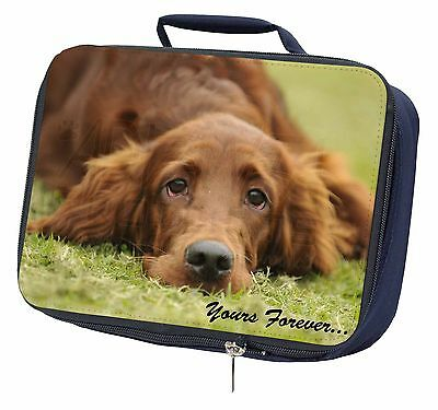 Red Setter Dog 'Yours Forever' Navy Insulated Lunch Box, AD-RS2yLBN