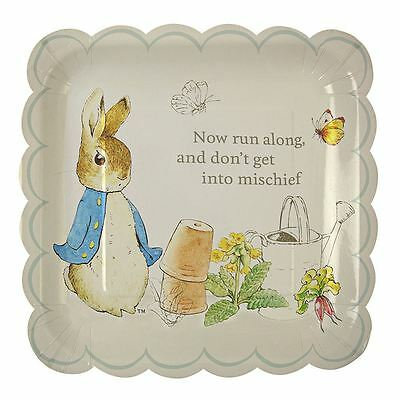 Peter Rabbit Themed Large Paper Plates Set x 12 Beatrix Potter Birthday Party