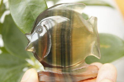 85g FISH ! NATURAL FLUORITE QUARTZ CRYSTAL CARVING GEM