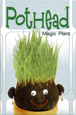 NEW* Science Kit Pot Head PotHead Magic Hair Plant Grass Planter - Great Fun