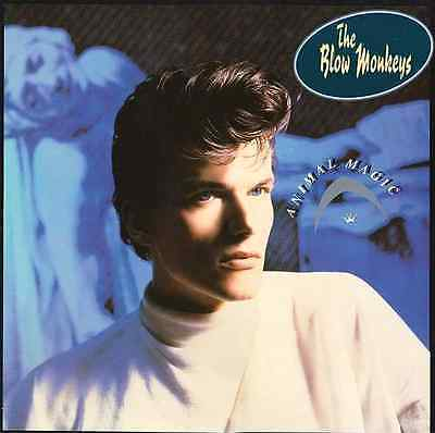 THE BLOW MONKEYS - Animal Magic (LP) (VG/EX)