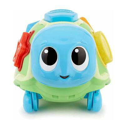 Little Tikes CRAWL 'N POP TURTLE Shape Sorter Colour Match Cruise Baby BN