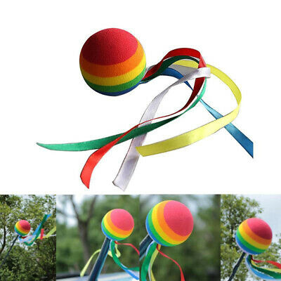 Rainbow Long Tail Ball Car Truck SUV Antenna Aerial Pen Topper Decoration Toy