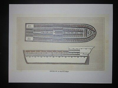 Decks of an Early 1800s Slave Ship Diagram