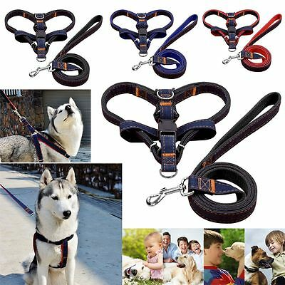 Dog Harness Leash Collar Set Adjustable Puppy Pet Harness Safety Control Lead