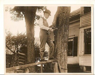 Vintage ACME newspictures photo Calvin Coolidge?