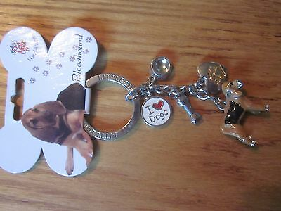 Bloodhound Dog Little Gifts Hand Painted Key Chain Ring With Charms