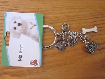 Maltese Dog Little Gifts Key Chain Ring With Charms