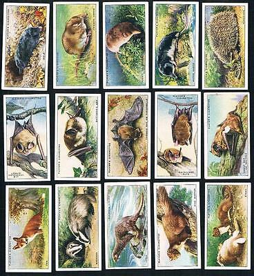 1939 John Player & Sons Animal of The Countryside Full Tobacco Card Set 50/50