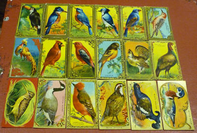 1925 C14 ITC Game Birds Tobacco Card Complete Set of 30 Cards