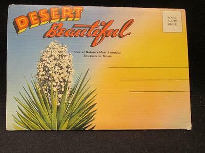 Desert Beautiful Vintage Linen Finish Postcard Folder Sandoval News Service