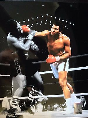 Muhammad Ali - Boxing Legend -  Licensed Unsigned Colour Photograph