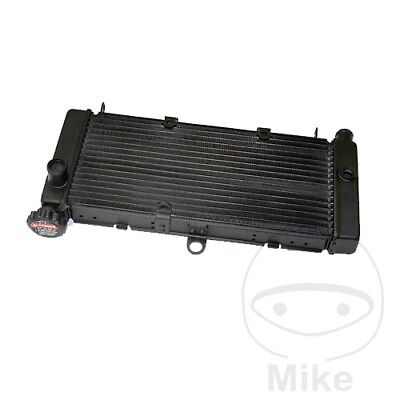 For Honda CB 600 F Hornet 2003 Radiator