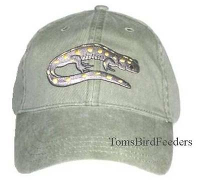 Spotted Salamander Embroidered Cotton Cap Amphibian Reptile