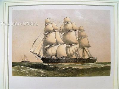 Antique Colour Lithographic Print HMS Volage Victorian Ships Of Royal Navy