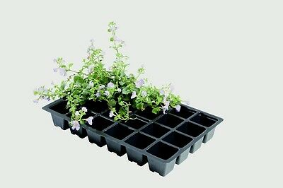 340789 Garland Professional Seed Tray Inserts Pack 5 24 Cell