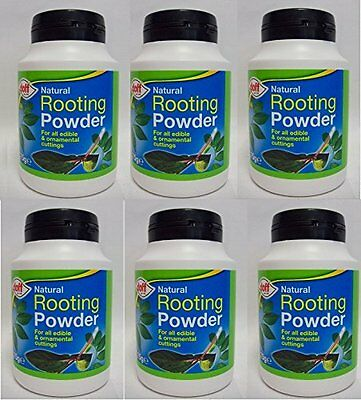 41133D [411339] Doff NATURAL Rooting Powder 75g PACK OF 6 DNA [2088]