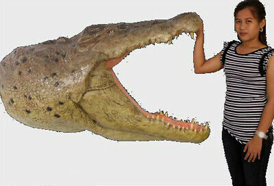 GIANT CROCODILE wall HEAD bust taxidermy alligator Sculpture Art
