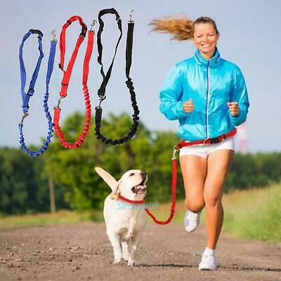 Nylon Elastic Pet Dog Puppy Leash Lead Strap Rope Waist Belt For Walking Running