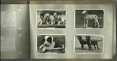 Original Senior Service cigarette cards - DOGS 1939 Full original set