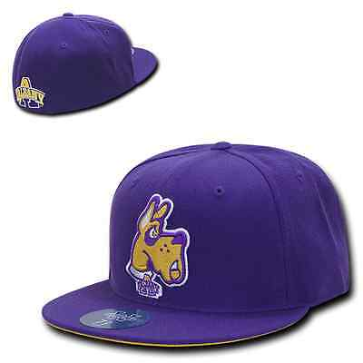 Purple University at Albany Great Danes NCAA Fitted Flat Bill Baseball Cap  Hat 7a5440552050
