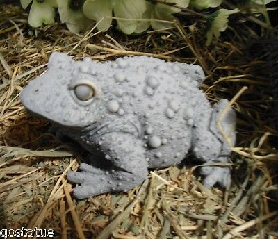 """casting latex w plastic backup very bumpy toad frog mold  5"""" x 4"""" x 2.5""""H"""