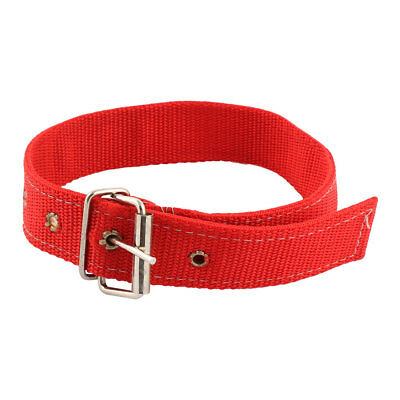 Single Prong Buckle Adjustable Nylon Belt Dog Doggy Puppy Neck Strap Collar Red