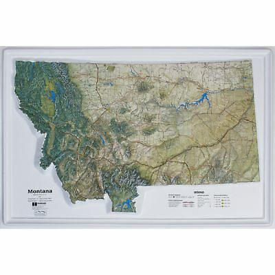 Montana State Raised Relief Map - Natural Color Relief Style