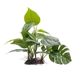 "Fluval Artificial Anubias Plant 20 cm (8"""") with Base for Aquariums • EUR 11,26"
