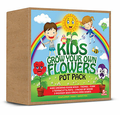 Kids Grow Your Own Flowers Pot Pack  Sunflower, Pansy & Sweet Pea Great Fun Gift