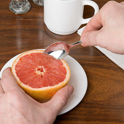 6 Grapefruit Spoons Windsor Heavy Weight 18/0 S/s Free Shipping