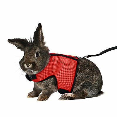Breathable Harness With Leash Lead For Small Animal Hamster Rabbit Rat Ferret