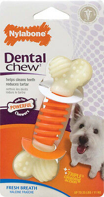 NYLABONE - Pro Action Dental Dog Chew Small - 1 Chewable