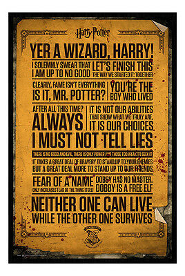 Framed Harry Potter Quotes Poster New