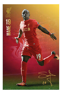 Liverpool FC Sadio Mane 2016 - 2017 Poster New - Maxi Size 36 x 24 Inch