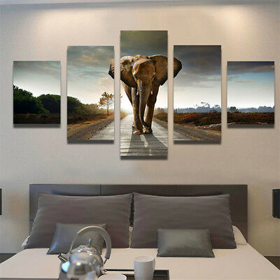 5 Panel Elephant Canvas Print Wall Art Oil Painting Picture Decor Noframe S
