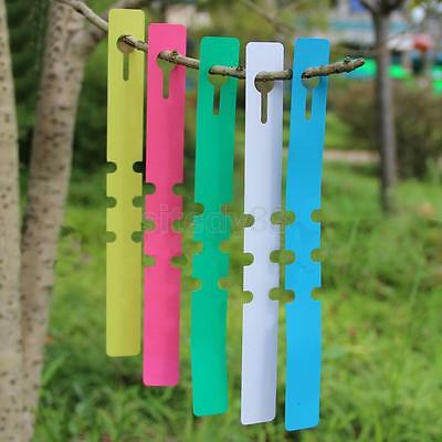 100Pcs 11CM/ 20CM PP Tags Greenhouse Garden Plant Ring Hanging Nursery Label Tag