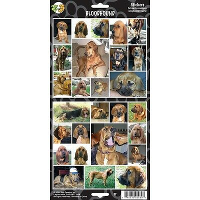 Sheet Of 27 Bloodhound Stickers - Stickersx Dog Lovers Gift Personalise